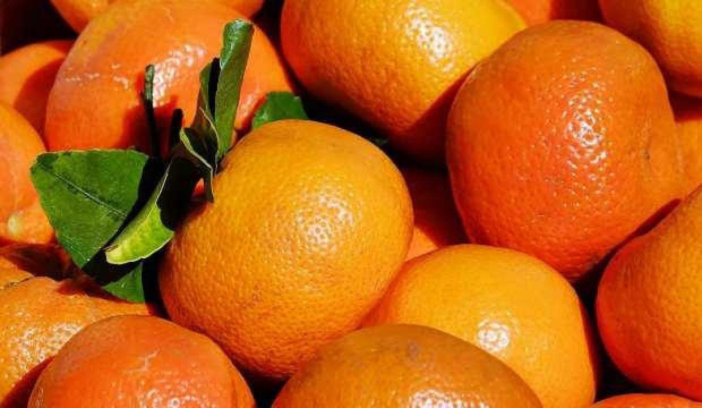 Rusya, 218 ton mandalinayı Türkiye'ye geri yolladı